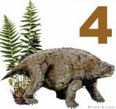 Pareiasuchus nasicornis