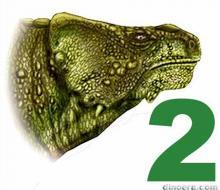 Bradysaurus seeleyi